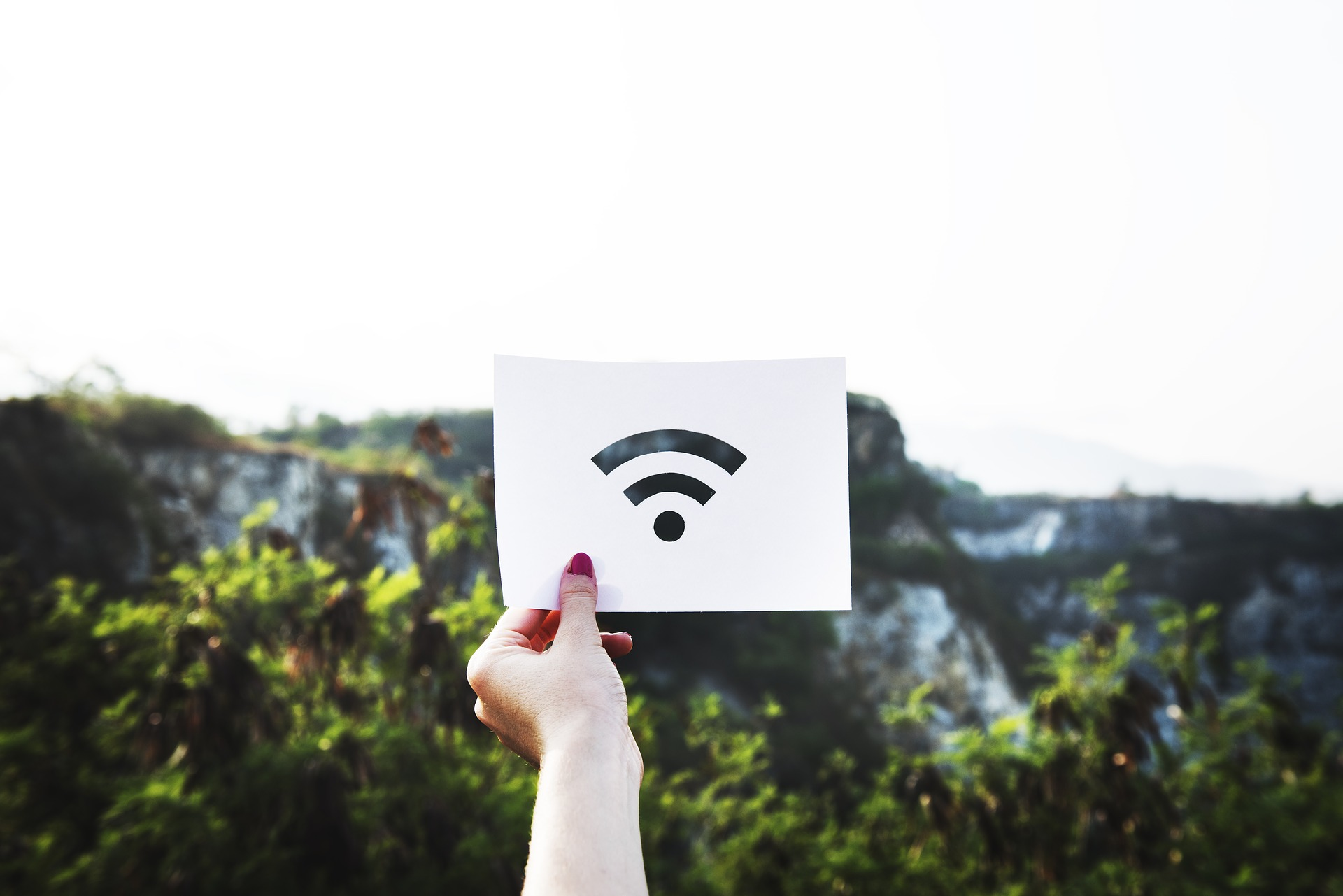What You Need to Know about Using Wi-Fi vs. Cellular Data